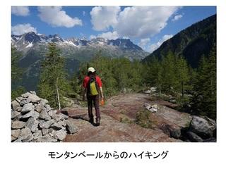 ヨーロッパ・アルプスの山旅0023_R.jpg