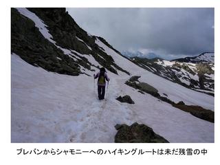 ヨーロッパ・アルプスの山旅0035_R.jpg