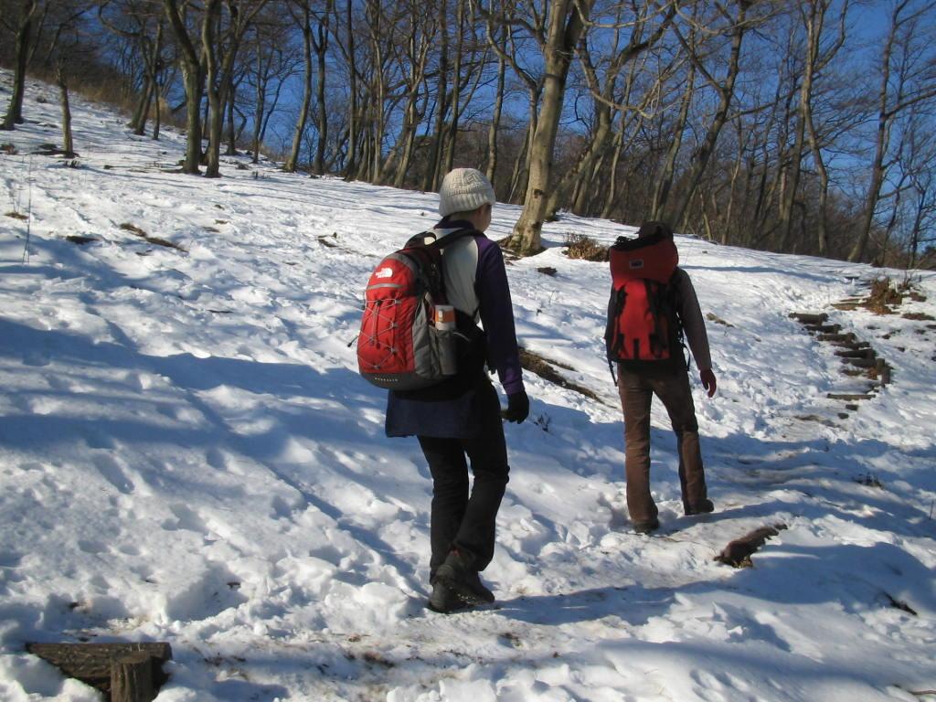 高取山の登路、一面の雪に出会いました。